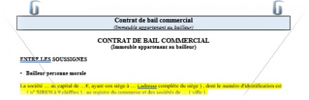 contrat type bail commercial